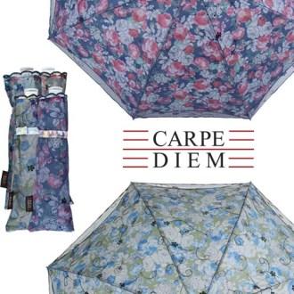 카르페디엠 3HHCP011 양산 [특판상품]