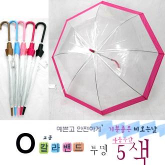 칼라 밴드 투명 비닐우산 [특판상품]